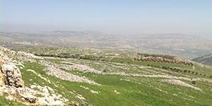 Landscape characteristics: sefar hamidbar