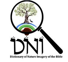 logo, science, DNI, tel aviv university