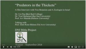 predators in the thickets, logo